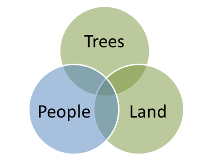 Tree People Land