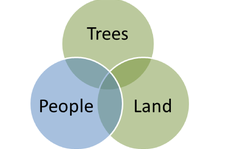 Tree_people_land_signpost